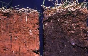 Улучшение воздухопроницаемости почвы - органические удобрения