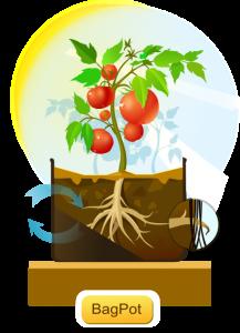Bagpot - контейнеры для выращивания конопли