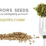 Друзья Этот День Наступил! День Рождения Компании Error-seeds!