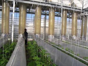 Воздуховоды для приточной вентиляции и системы кондиционирования воздуха