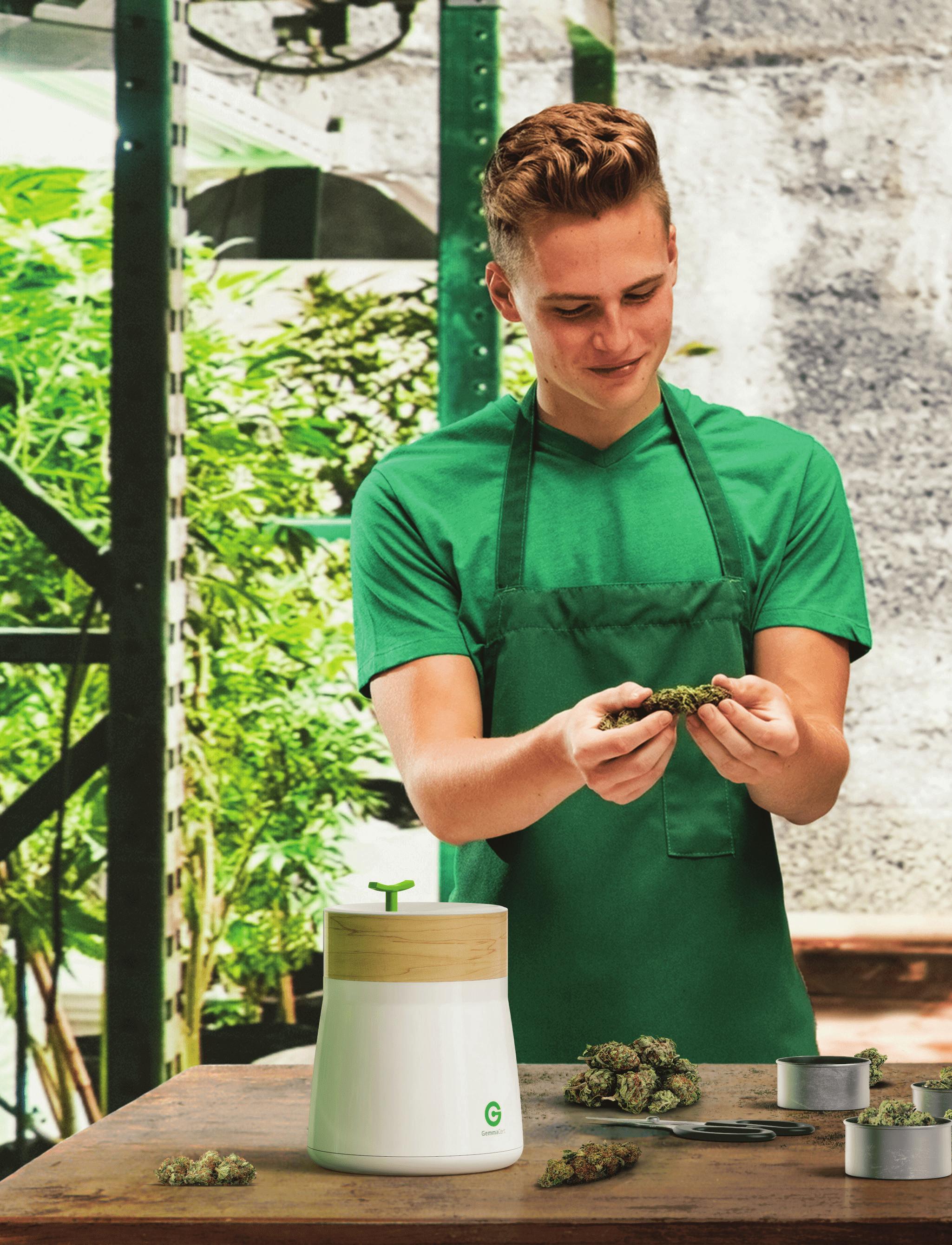 Проверить качество марихуаны с помощью новой технологии GemmaCert